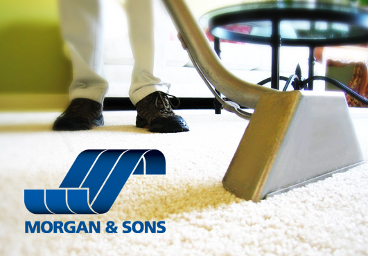 Morgan & Sons Carpet Cleaning